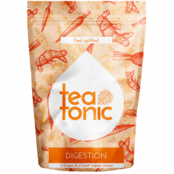 Teatonic - Digestion - ginger-carrot digestive infusion 60g
