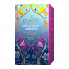 Day to Night Collection 20 Teabags Organic