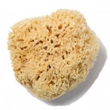 Anaé - Natural Sponge