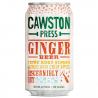 Ginger & Apple Soda