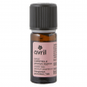 Geranium Rose Essential Oil Organic