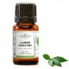 Noble Laurel Essential Oil Organic