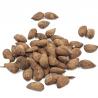 Tamari-amandelen in bulk Bio