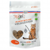 Cat Treat Fish Organic