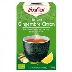 Groene thee gember citroen 1x17 zakjes,Thee en kruidenthee