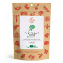 SolSemilla - Chips de Kale spiruline & Tahini 35g