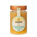 Solleone - Eucalyptus Honey 250g