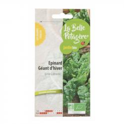 La Belle Potagère - Graines d'Epinard géant d'hiver Bio 5g