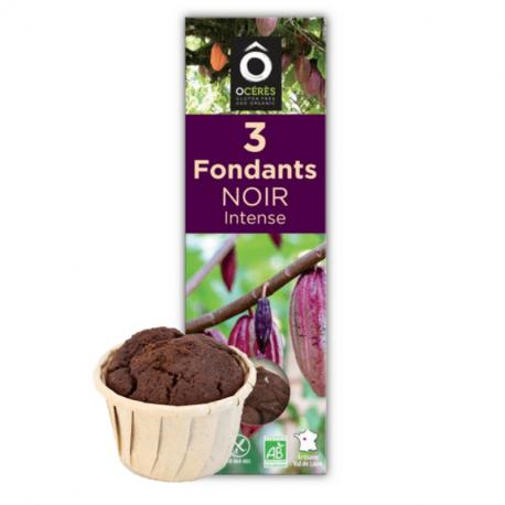 Happy Go - mini fondants au chocolat 3x55g bio (sans gluten et sans lactose)