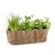 Radis & Capucine - Fabric planter aromatic plants organic