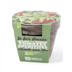 Radis & Capucine - Pot Terre cuite Basalte 13cm Tomate cerise bio