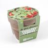Radis & Capucine - Pot terrecota basalt 13 cm organic cherry tomatoes