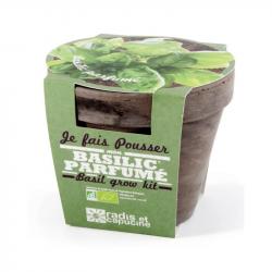 Radis & Capucine - Pot terrecota basalt 13 cm bio basilicum